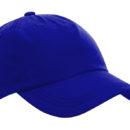 Liberty Caps